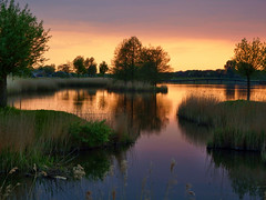 Sunset lake (STEHOUWER AND RECIO) Tags: trees sunset lake holland reed water netherlands dutch reflections landscape zonsondergang bomen scenery meer colours view riet waterscape kleuren barendrecht southholland gaatkensplas