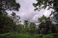 A quick snap using GoPro while treaking #treck #nature #fun #bethelhomestay #incredibleindia #india #gopro #july #2016 #trees #green #mountain (karan667) Tags: landscape treck nature fun bethelhomestay incredibleindia india gopro july 2016 trees green mountain bethalhomestay kutta
