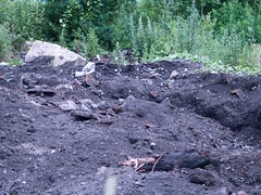 P7096122 (thence5) Tags: thence5 1265 minesweeper      petrozavodsk    sonya onego onegalake