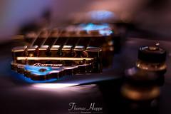 IMG_8599.jpg (thomas_hoppe) Tags: egitarre ibanez