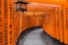 Fushimi Inari-taisha (gringerberg) Tags: travel japan fantastic kyoto  japon landoftherisingsun paysdusoleillevant canoneos6d gringerberg gringerbergphotography