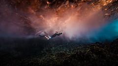 LL in the Underworld - 1397-_MG_4023 (Robert Rath) Tags: underworld snorkelling seascape swimming tonga vavau kingdomoftonga travel ocean underwater photography
