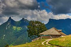 Les mongerons (Meinrad Prisset) Tags: gruyre districtdelagruyre lesmongerons cantondefribourg paysages alpes swissmountains montagnes switzerland suisse schweiz swizzera nikon nikond800 afsnikkor2485mmvr nikkor captureone9