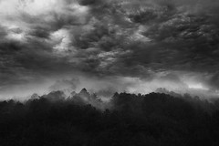 (Malykhanov) Tags: black bw blackwhite blackandwhite monochrome dark trip travel trees tree forest fog storm heaven sky clouds rain summer mist atmosphere silence landscape nature