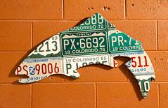 License Plate Fish (photographyguy) Tags: denver colorado licenseplate fish trout art artwork wall cinderblocks concreteblocks orange denverbeercompany 1974 plattest 1965 centennial