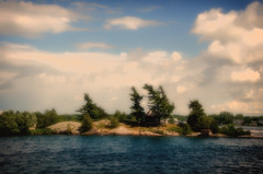 Group of Seven (madeleine_nik) Tags: island 1000islands trees windy niksoftware stlawrenceriver