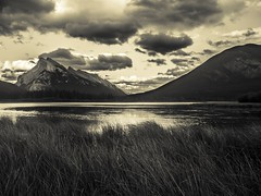 Sunrise at Vermillion Lakes (self.defenestration) Tags: skies clouds dramatic speia splittone mountain lake grass water sunrise canada banff alberta landscape