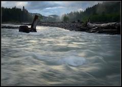 The Nisqually River Afternoon (Ernie Misner) Tags: skatecreekroad ashfordwa nisquallyriver washington river erniemisner nikon d800 nik capturenx2 f8andbethere