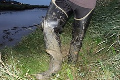 Archive (essex_mud_explorer) Tags: waders watstiefel mud creek boots thigh muddy gummisteifel cuissardes bullseyehood
