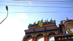 DSCF6932 (shahmurai) Tags: fujifilmxt1 mithi nagarparkar thar sindh pakistan