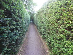 Photo of Hampton Court Castle Gardens & Parkland - the garden - Maze