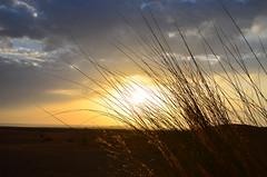 2011.08.24 06.19.18.jpg (Valentino Zangara) Tags: desert flickr morocco mtis meknstafilalet marocco ma