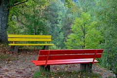 Les bancs des photographes (Canon et Nikon)! (jjcordier) Tags: rouge jaune vert banc nature canon nikon