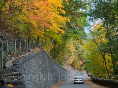 Henry Hudson Drive, Palisades Interstate Park, Englewood Cliffs, New Jersey (jag9889) Tags: autumn usa englewoodcliffs foliage wall bergencounty henryhudsondrive car palisadesinterstatepark newjersey outdoor 2016 road jag9889 20161024 auto automobile colors fall gardenstate landscape nj newjerseysection pip palisades park transportation unitedstates unitedstatesofamerica vehicle us