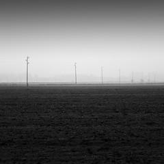 Formation (Jaques10000) Tags: nikon d750 landscape landschaft havelland brandenburg minimal autumn monochrome blackwhite longexposure haida