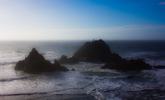 After the Storm (San Francisco Gal) Tags: ocean sanfrancisco storm surf pacific gull wave pelican cormorant sealrocks
