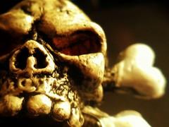Fake Skull (Ana Villico) Tags: camera detalle detail macro toy skull ipod touch fake ios app