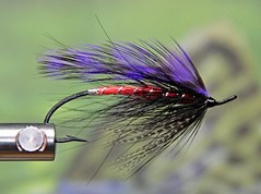 z1-17-15 003 (taylorsnest) Tags: fishing flies spey 11715