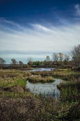 Parc Des Rapides (Ian David Blm) Tags: river montreal swamp stlawrence wetlands marsh shelter stlaurent penninsula sanctuary fleuve verdun parcdesrapides