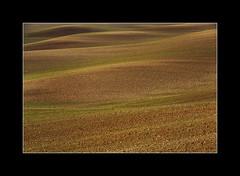 MAR INTERIOR (Juan J. Marqués) Tags: verde teruel texturas siembra llanuras ondulaciones arcillas