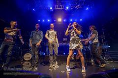 "Chicane in concert at KOKO, London, England, Britain - 20 February 2015 (highlandcow) Tags: england london simon paul aiden cow andrews mark small nick andrew christian highland burns merry natasha koko chicane highlandcow hendry pusey ""andrew maccoll bracegirdle maccoll"" wwwhighlandcowcom"