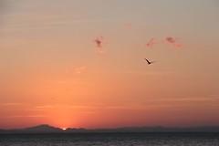 Coucher de soleil sur le pacifique (bga92) Tags: ocean sunset sea nicaragua coucherdesoleil