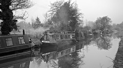 Winter on the Water Lily (Terry Kearney) Tags: trees england sky blackandwhite heritage history nature water monochrome weather birds animals fog skyline rural canon reflections landscape boats daylight woods europe flickr waterlily outdoor wildlife smoke culture ducks explore birkenhead february kearney waterway wirral merseyside 2015 wirralway ellesmereport ellesmereportboatmuseum nationalwaterwaysmuseum oneterry backfordcheshire terrykearney ellesmereportcheshire february2015 croughtoncheshire wervincheshire stoakcheshire littlestanneycheshire cheshire2015 winteronthewaterlilyatcroughtoncheshire