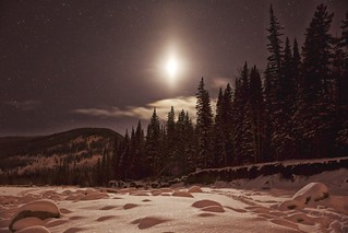Moonlight on fresh snow