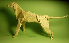 Dog (n_kuprianov) Tags: origamidog origamianimal оригамисобака оригамиживотное