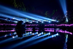 DSC_6620~2  (michaeliao27) Tags: show light music lake village culture taiwan laser sakura aboriginal  nantou  formosan