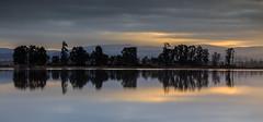 Misty morning, Ria de Aveiro (paulosilva3) Tags: world morning trees misty sunrise canon de landscape eos lee filters ria aveiro waterscape mistic 6d polariser lakescape riverscape