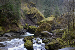Tanner Creek (C-Brese) Tags: fall water oregon creek river waterfall columbia falls waterfalls gorge tanner wahclella cbrese