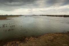 The Rhine near Rees (Frednik) Tags: grass clouds ship flood wolken shore ufer rhine rhein schiff rees freighter hochwasser distantview nikond600