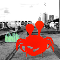 Crabby (Markj9035) Tags: newzealand crab auckland asb yaught aucklandharbour