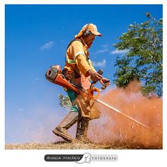 Trabalhadores da AMMA (angela.macario) Tags: ngela macrio trabalhador trabalhadores parque amma goinia gois brasil brazil prefeitura