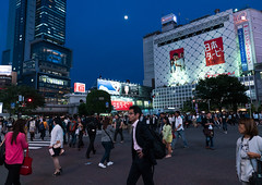 Shibuya crossing at night, Kanto region, Tokyo, Japan (Eric Lafforgue) Tags: road street city light people urban japan horizontal night buildings advertising outdoors photography japanese tokyo asia crossing exterior crowd shibuya citylife pedestrian illuminated billboard advertisement busy nighttime pedestrians billboards metropolis nightview popular adults advertisements groupofpeople crowded advertise urbanscene kantoregion advertisingsign colorimage buildingexterior urbanarea dogenzaka shibuyaku advertisingsigns 9people mixedagerange colourpicture japan161041