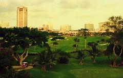 Boca Raton Resort Golf Course 1995 (NIKON COPPER) Tags: landscape negative epson 4990 kodak gold 200 nikon 8008s
