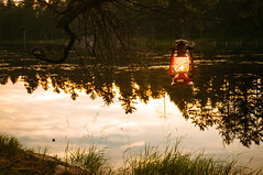 Warm Summer Night (Jackx001) Tags: 2016 camping forest gaia jacknobre july nature ontario wild discover explore lake lakes lostlake pines woods world
