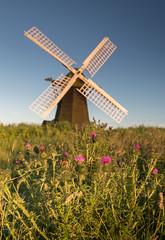 Herringfleet (Sarah_Brooks) Tags: herringfleet mill windmill windpump norfolk suffolk thistles summer
