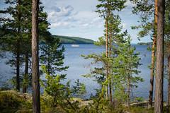 Boat on the Lake (@Tuomo) Tags: finland päijänne jämsä lake summer beautiful sunshine nikon df nikkor 60mm28 afs