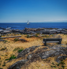 Cattle Point Bench (Martin Smith - Having the Time of my Life) Tags: victoria cattlepoint benchmonday happybenchmonday parkbench nikkor2485mmf3545gedvr nikond750 martinsmith martinsmith britishcolumbia canada ca oakbay chainislets hbm uplandspark ngc