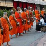 128. Laos. Luang Prabang. Cérémonie des offrandes aux moines, au lever du jour thumbnail