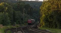 1428_2016_07_08_Baunatal_Guntershausen_DB_115_114_mit_PbZ_2475_Kassel_Hbf_-_Frankfurt_Hbf_7x_Dosto_3x_IC_Wagen (ruhrpott.sprinter) Tags: ruhrpott sprinter geutschland germany nrw ruhrgebiet gelsenkirchen lokomotive locomotives eisenbahn railroad zug train rail reisezug passenger gter cargo freight fret diesel ellok hessen inselbahnhof guntershausen bebra boxxboxxpress db cantus hebhlbahn mrcedispolok prontorail rbk sbbc spagspitzke txltxlogistik wwwdispolokcom xrail 101 114 115 146 120 51 152 155 182 185 193 427 428429 482 628928 946 makde27001251 es64u2 es64f4 pbz ic re outdoor logo graffiti natur