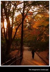 P3660   Nara Park (The imaginative landscape) Tags: nature japan dusk autumnleaves nara yamato  narapark   olympuspenep3 ealabo theimaginativelandscape fuwarysuke