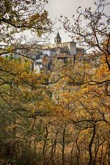 Autunno al paese (pierpaolotanno) Tags: wood autumn italy italia autunno bosco molise paese gildone