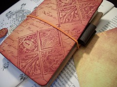 Traveler's Notebooks and Inserts (LadyFalconTN) Tags: notebook travelers