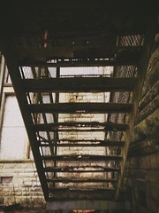 Rusty steps (tracymaureensiobhan) Tags: abandoned urbandecay steps rusty fireescape derelict iphone iphoneography