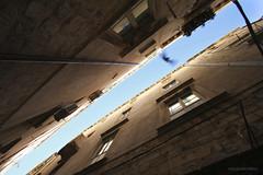 Up (Maija Savijärvi) Tags: old city sky bird town croatia approved dubrovnik