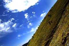23 - World of the Light Horses (onesecbeforethedub) Tags: travel mountain mountains travelling trekking trek hiking manipulation images technical imagination traveling kyrgyz kyrgyzstan lunar lanscape flusser vilem