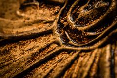 Copper Petals # FlickrPhotowalk                      On Explore 11-07-2016 (Aguisolcr) Tags: flower macro textura yellow costarica flor amarillo copper cobre cartago flickrphotowalk macrotextures macromondays proyecto52 fotoras